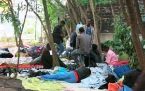 migrants_bois-dormoy